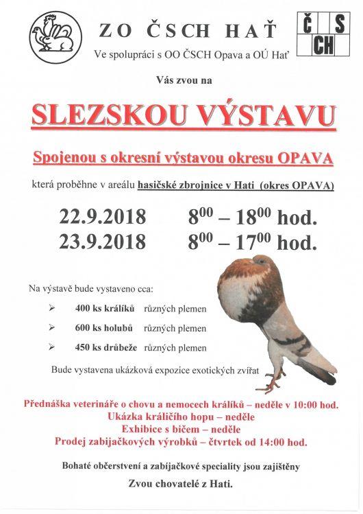 plakát k akci SLEZSKÁ VÝSTAVA