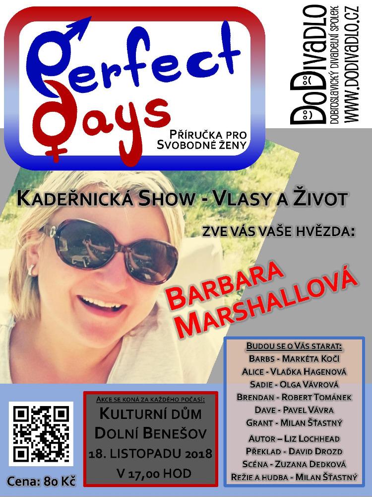 plakát k akci PERFECT DAYS