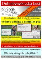 plakát k akci DOLNOBENEŠOVSKÁ KOST
