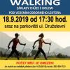 plakát k akci NORDIC WALKING