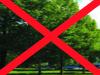 Na obrázku jsou stromy a přeškrtnutý jako zákaz vstupu