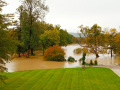 Zaplavený park